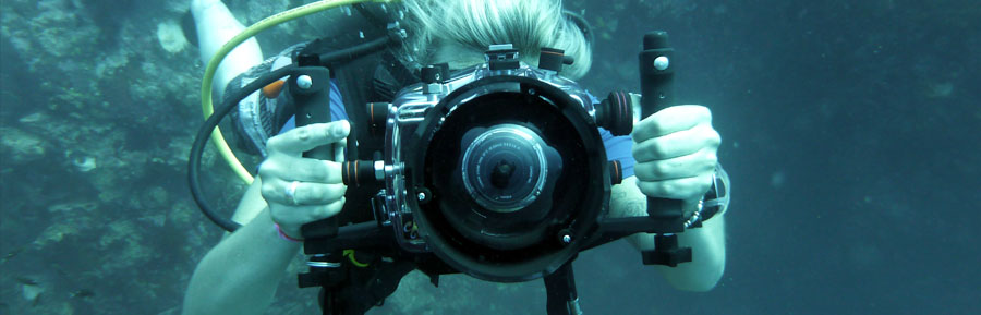 Koh Tao PROvideo professional underwater video cameras