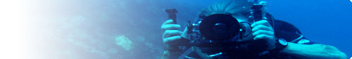 become an underwater videographer today